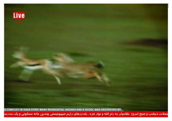 "<a href=""/artist/hamed-ghassemi"">Hamed Ghassemi</a>"