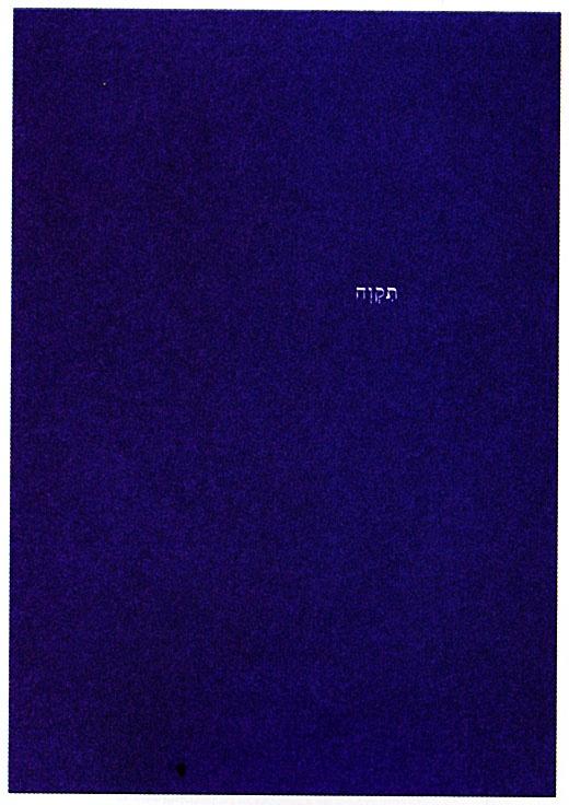 """<a href=""""/artist/meital-gurman"""">Meital Gurman</a>, <a href=""""/artist/saar-gil"""">Saar  Gil</a>"""