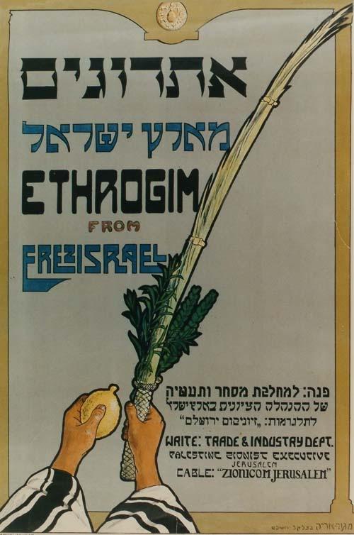 """<a href=""""/artist/meir-gur-arieh"""">Meir  Gur-Arieh</a>"""
